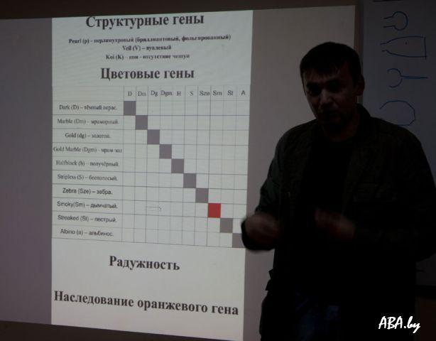 """Семинар """"Пресноводный аквариум"""""""